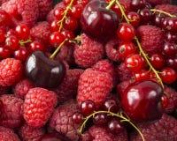 Achtergrond van frambozen, rode aalbessen en kersen Verse bessenclose-up Hoogste mening Achtergrond van rode bessen Stock Fotografie