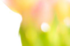 Achtergrond van gele, groene en roze kleuren royalty-vrije stock fotografie