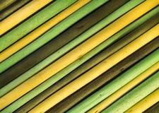 Achtergrond van geschilderde gele en groene takjes Royalty-vrije Stock Afbeeldingen