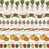 Achtergrond van gevoerde groenten in uitstekende toon Stock Illustratie