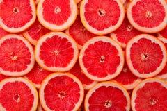 Achtergrond van grapefruit de rode sappige plakken royalty-vrije stock fotografie