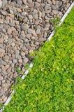 Achtergrond van gras en steen Stock Afbeeldingen