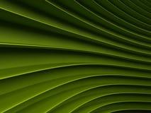 Achtergrond van groene abstracte golven render Stock Afbeeldingen
