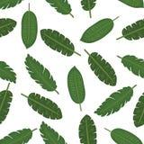 Achtergrond van het bladeren de naadloze vector bloemenpatroon Stock Foto