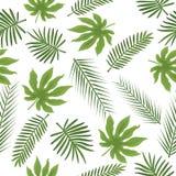 Achtergrond van het bladeren de naadloze vector bloemenpatroon Royalty-vrije Stock Foto