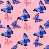 Achtergrond van het kleurrijke vlinders vliegen Royalty-vrije Stock Afbeeldingen