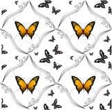 Achtergrond van het kleurrijke vlinders vliegen Stock Fotografie