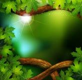 Achtergrond van het mystieke bos stock illustratie