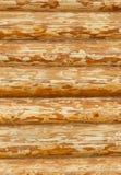 Achtergrond van houten muur Stock Foto's