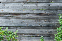 Achtergrond van houten planken Stock Fotografie