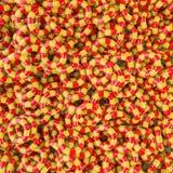 Achtergrond van jonge geitjes de opblaasbare ringen Stock Fotografie
