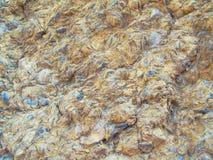 Achtergrond van kalksteen Stock Foto