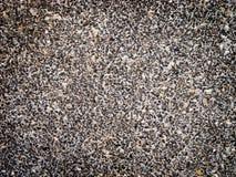 Achtergrond van kleine steen Royalty-vrije Stock Afbeeldingen