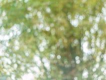 Achtergrond van natuurlijk licht bokeh stock afbeelding