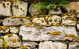 Achtergrond van natuurlijke natte steenmuur royalty-vrije stock foto's