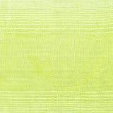 Achtergrond van nieuw groen textiel zilveren lijnpatroon Royalty-vrije Stock Foto