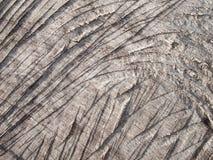 Grijs hout Royalty-vrije Stock Afbeeldingen