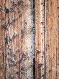 Achtergrond van oude korrelige pijnboom met sneeuwval stock afbeelding