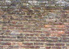 Achtergrond van oude uitstekende vuile bakstenen muur met schilpleister, textuur Royalty-vrije Stock Foto