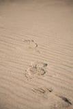 Achtergrond van overzees zand Royalty-vrije Stock Afbeelding