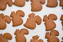 Achtergrond van peperkoekkoekjes dat wordt gemaakt Royalty-vrije Stock Foto