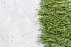 Achtergrond van pijnboomnaalden op het zand Royalty-vrije Stock Foto's