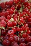 achtergrond van rijpe sappige bessen van rode aalbessen, frambozen en kersen De mening van het close-upplan van hierboven royalty-vrije stock afbeeldingen