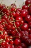 achtergrond van rijpe sappige bessen van rode aalbessen, frambozen en kersen De mening van het close-upplan van hierboven royalty-vrije stock afbeelding