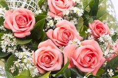 Achtergrond van roze rozen Royalty-vrije Stock Foto's
