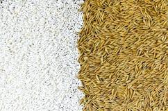 Achtergrond van stapel van padie en en rijstzaad royalty-vrije stock foto's