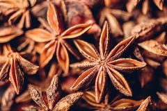 Achtergrond van Ster Anise Fruits en Zaden royalty-vrije stock afbeeldingen