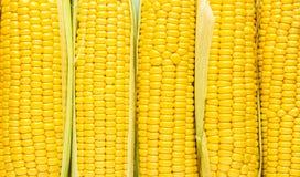 Achtergrond van suikergraan stock afbeeldingen