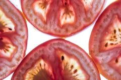 Achtergrond van tomaten Stock Foto
