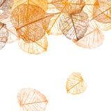 Achtergrond van vector de herfstbladeren Vector Illustratie