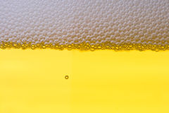 Achtergrond van vers schuimend bier. Stock Foto