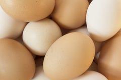 Achtergrond van verse eieren royalty-vrije stock foto's