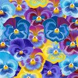 Achtergrond van viooltjes Royalty-vrije Stock Foto's