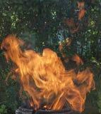 Achtergrond van vlam Stock Foto's
