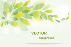 Achtergrond van vliegende groene bladeren Royalty-vrije Stock Afbeeldingen