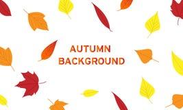Achtergrondbladeren in de herfst met vele kleuren stock illustratie