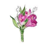 Achtergrondboeket van wildflowers watercolor Stock Afbeeldingen