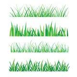 Achtergronden van Groen die Gras op Witte Vectorillustratie worden geïsoleerd Stock Fotografie