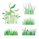Achtergronden van Groen Gras op Witte Vectorillustratie Royalty-vrije Stock Afbeeldingen