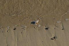 Achtergrondgebruik - vloedteken op een zandig strand royalty-vrije stock fotografie