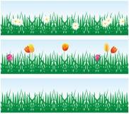 Achtergrondgras en bloemen Stock Foto