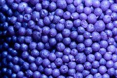 Achtergrondhoop van violette kleine ballen voor bad royalty-vrije stock fotografie