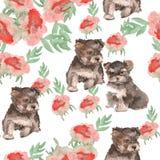 Achtergrondkleuren en kleine honden naadloos patroon Yorkie Water Stock Foto's
