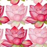 Achtergrondlotusbloembloemen Naadloos patroon waterverf illustrat Royalty-vrije Stock Fotografie