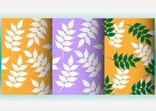 Achtergrondpatronen met bladeren in verschillende kleuren Stock Fotografie