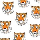 Achtergrondpatroon met kleurrijke hand getrokken tijger op witte achtergrond Royalty-vrije Stock Fotografie